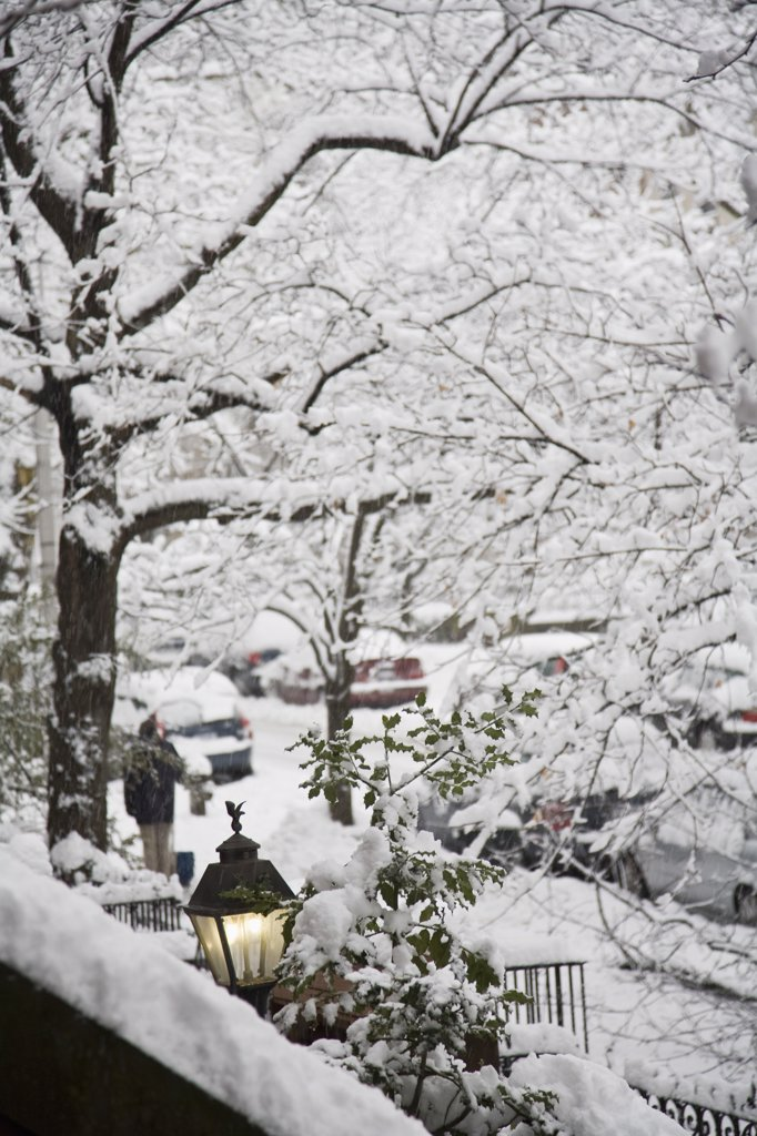 View of a snowy street from a front stoop, Brooklyn, New York, USA : Stock Photo