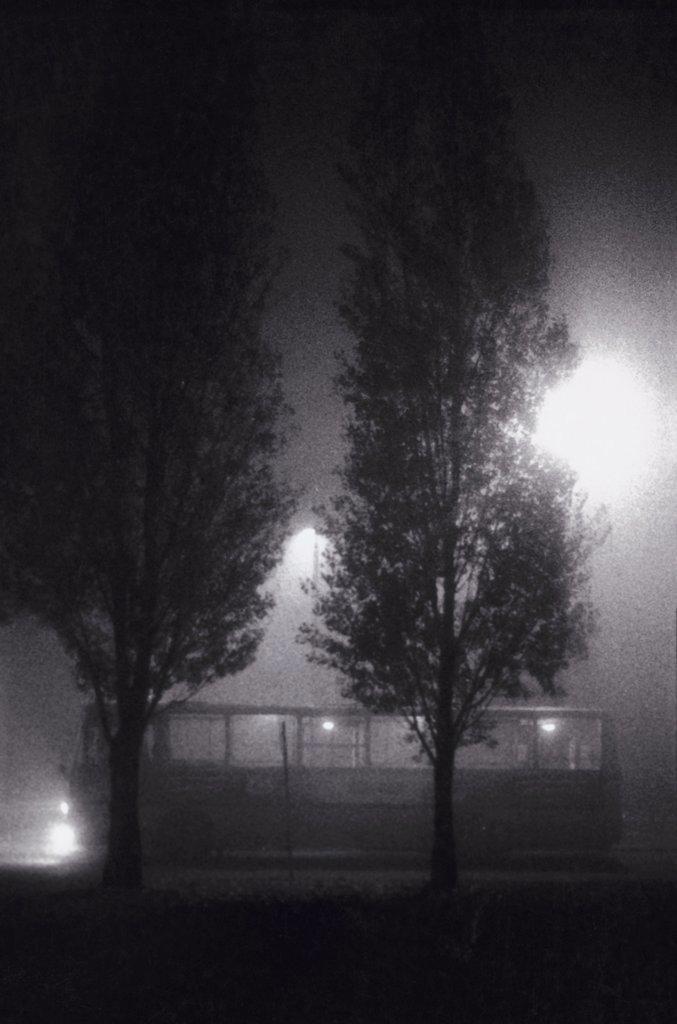 bus behind trees at night : Stock Photo