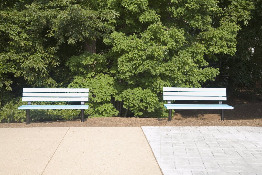 Stock Photo: 1570R-130504 Park benches side by side
