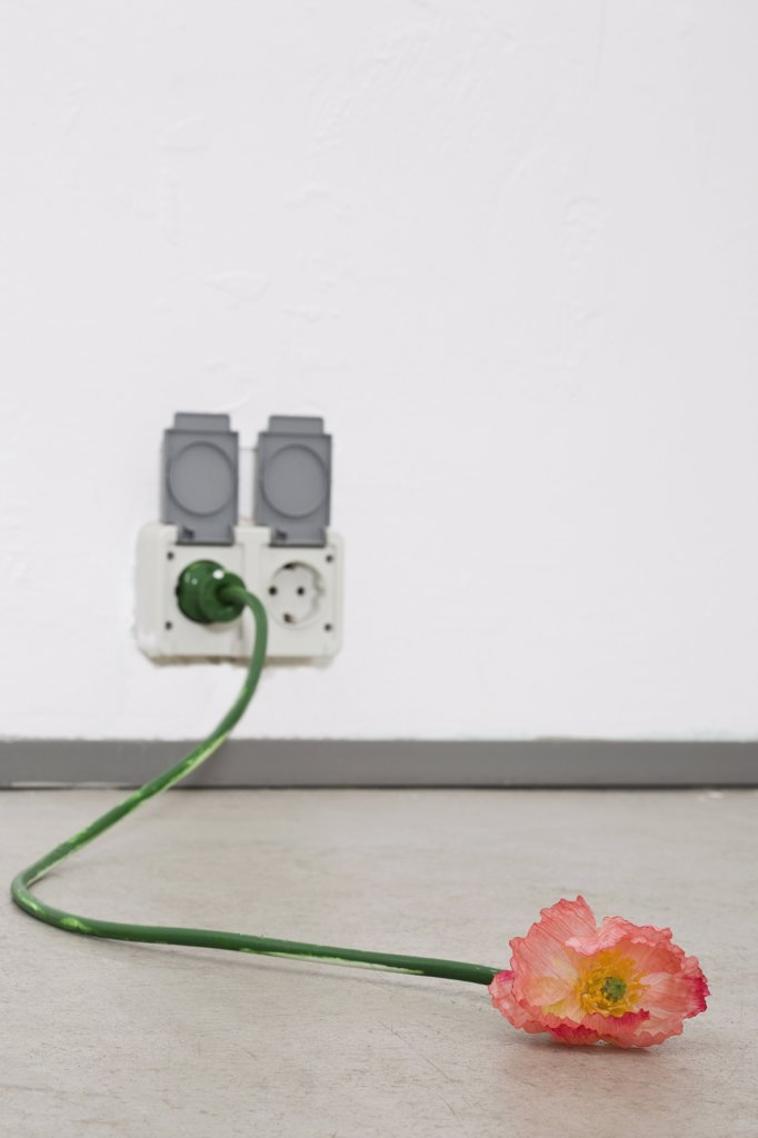 Stock Photo: 1570R-130864 A cord that looks like a flower and stem plugged into an outlet