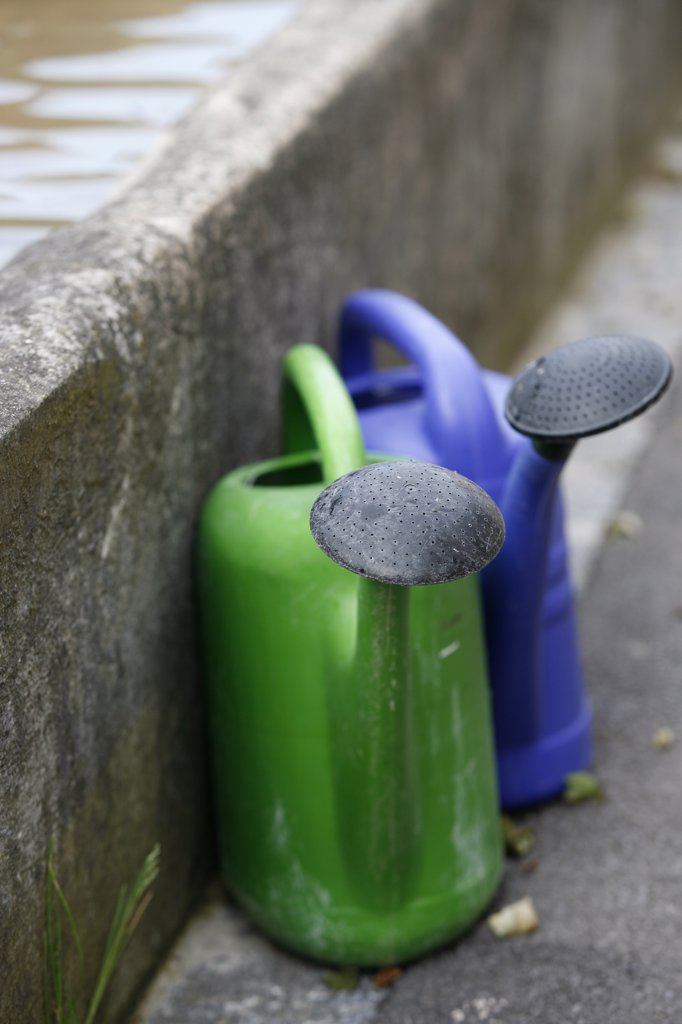 Two plastic watering cans : Stock Photo