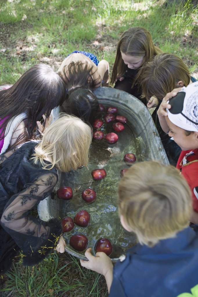 Stock Photo: 1570R-132392 Group of children bobbing for apples at Halloween party