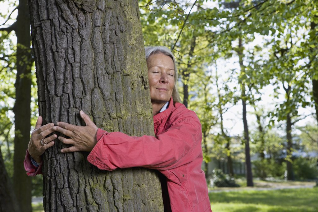 A senior woman hugging a tree : Stock Photo