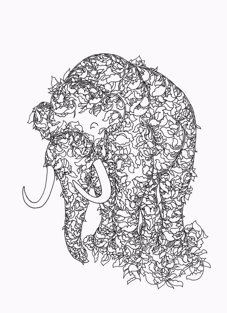 Woolly Mammoth : Stock Photo