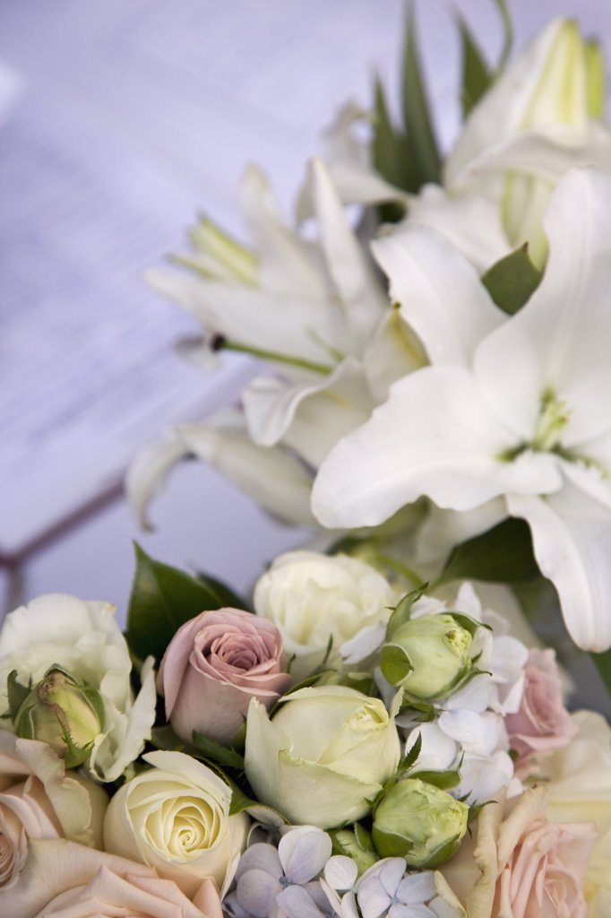 Stock Photo: 1570R-133769 Bunches of flowers