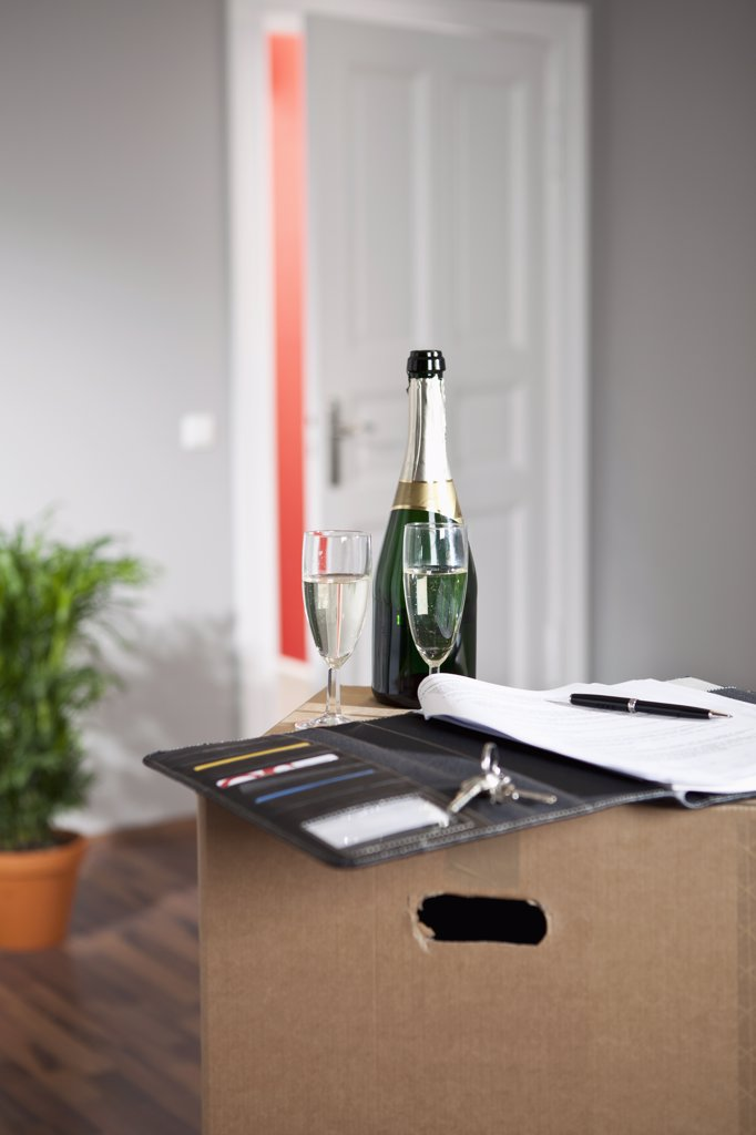 Stock Photo: 1570R-135608 Champagne and a contract in a living room with moving boxes