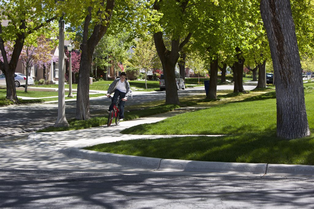 Stock Photo: 1570R-137346 Boy riding bike on footpath among roadside trees