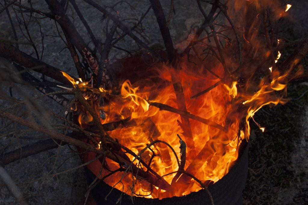 Branches on fire in drum : Stock Photo