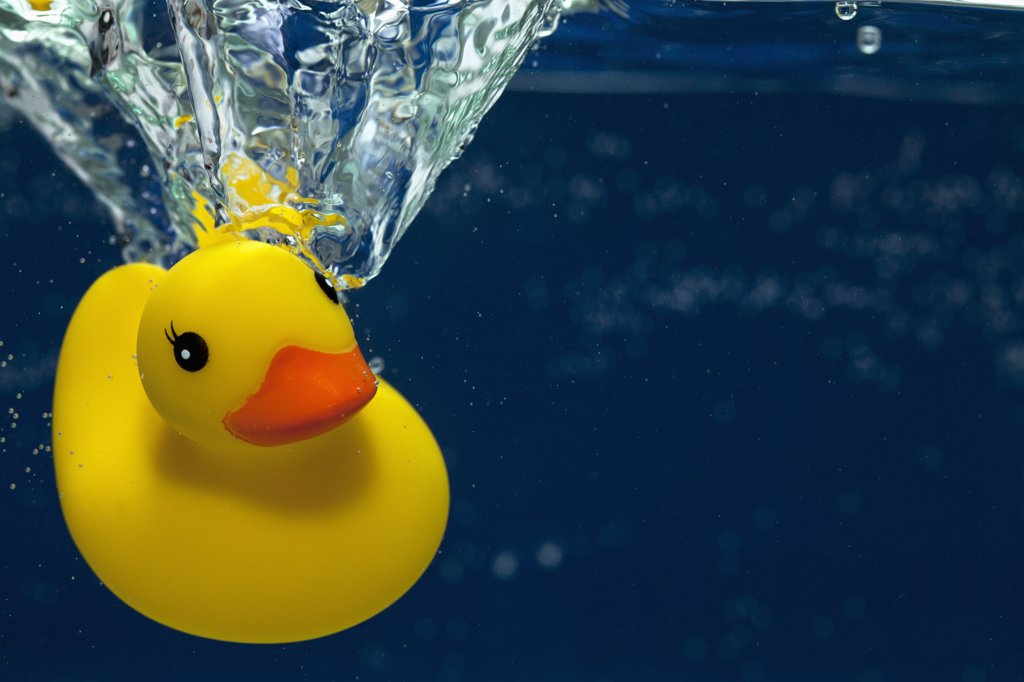 A rubber duck underwater : Stock Photo