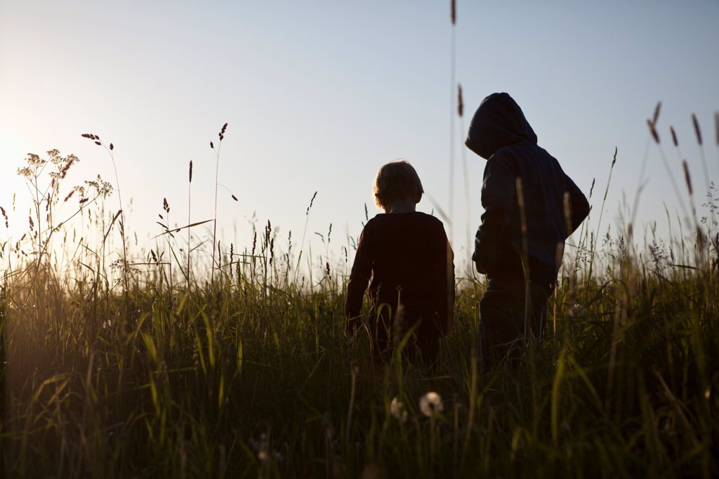 Stock Photo: 1570R-140360 Two boys standing in a field