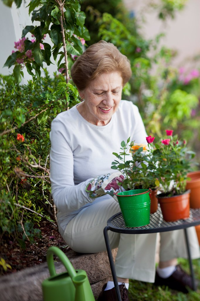 Stock Photo: 1570R-140418 A senior woman gardening