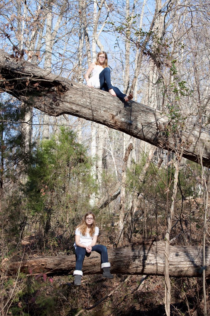 Two similar girls sitting on tree trunks in forest in Mooresville, North Carolina, USA : Stock Photo