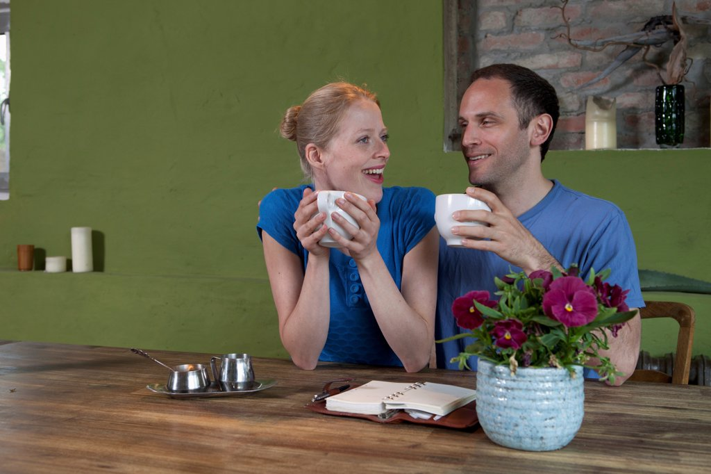 Stock Photo: 1570R-140581 A couple sitting at a dining table with a personal organizer, talking excitedly