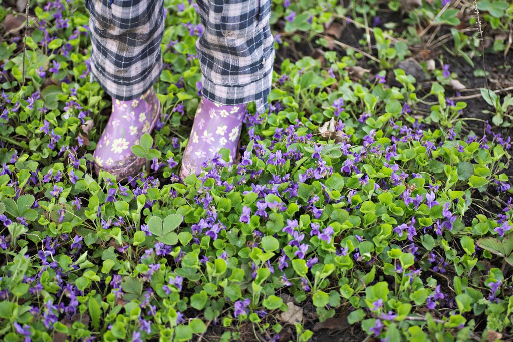Stock Photo: 1570R-141101 Low section of a girl standing in a garden with gumboots
