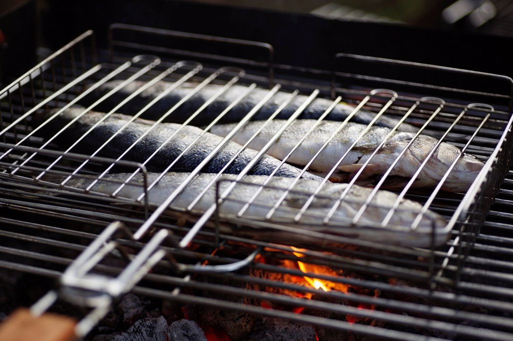 Stock Photo: 1570R-141152 Fish on a barbeque grill