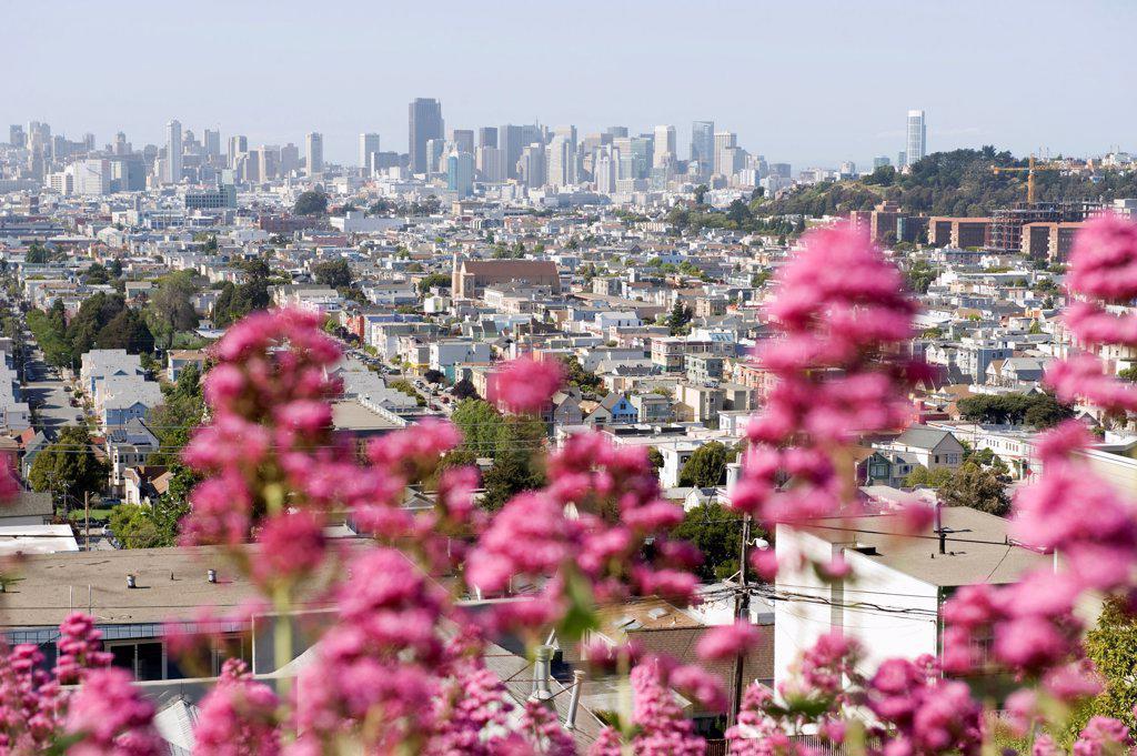 Stock Photo: 1570R-141336 City view, San Francisco, California, USA