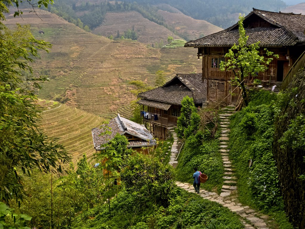 Stock Photo: 1570R-141816 A man walking down a Dong village footpath near terraced rice paddies, Guangxi, China