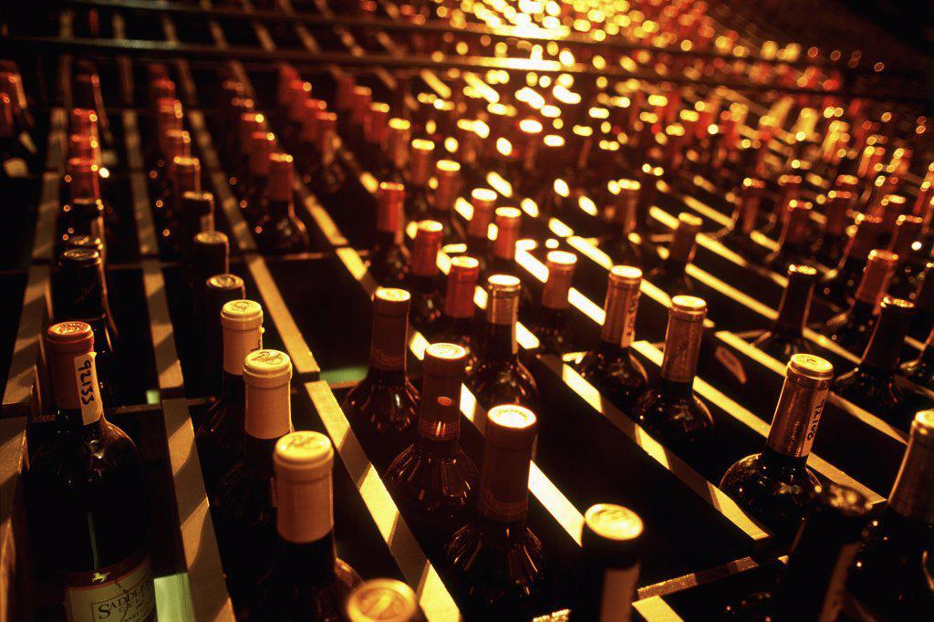 Bottles of wine in a wine cellar : Stock Photo