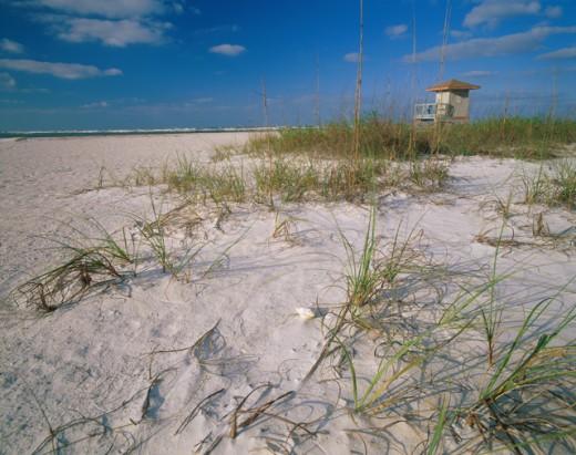 Sarasota Florida USA   : Stock Photo