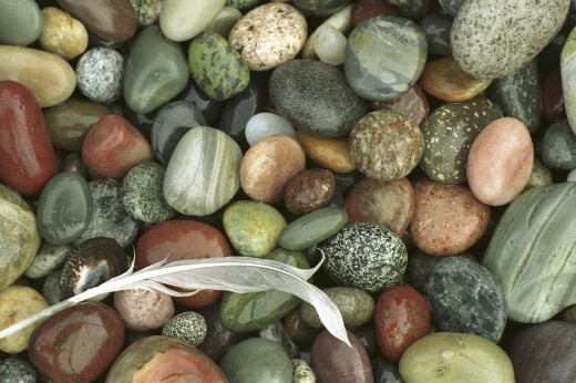 Close-up of a feather on pebbles : Stock Photo