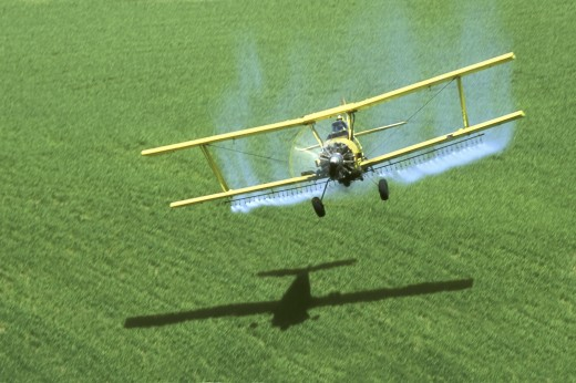 Stock Photo: 1574R-016700 Crop Duster