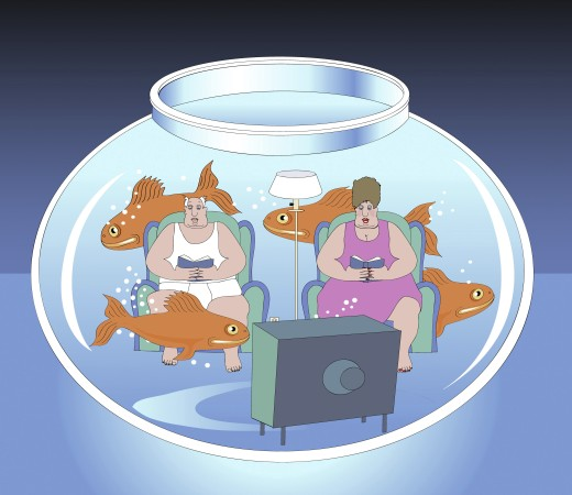 Stock Photo: 1574R-018988 Living in a Fishbowl