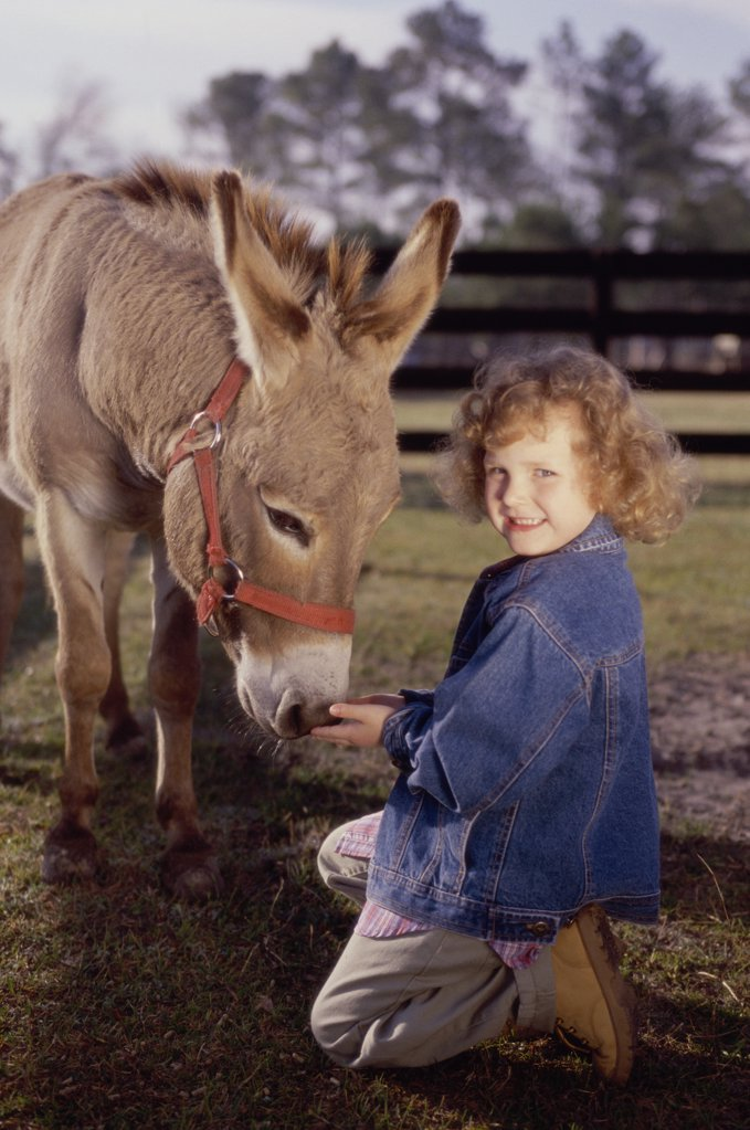 Portrait of a girl feeding a donkey : Stock Photo
