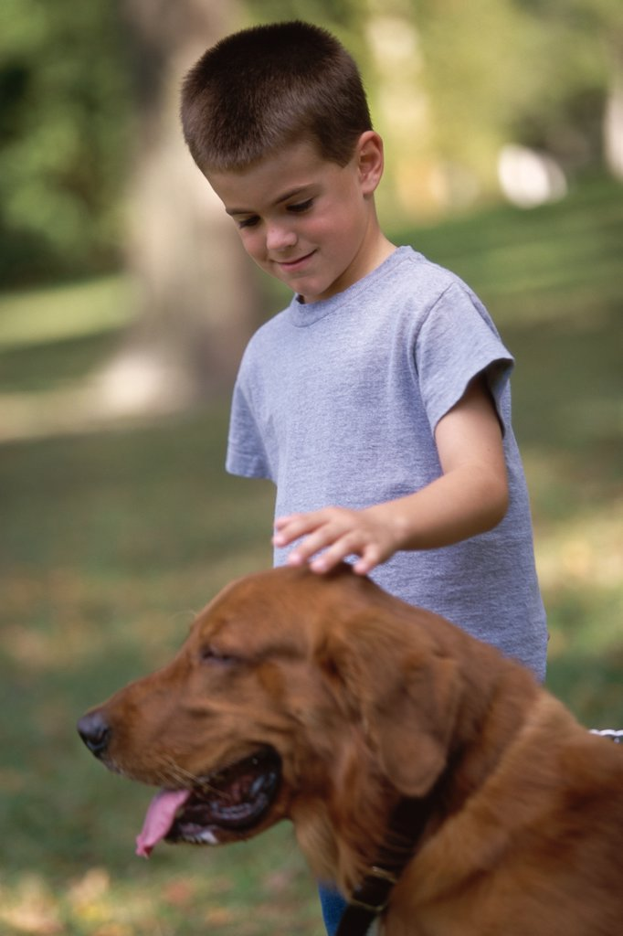 Boy petting his dog : Stock Photo