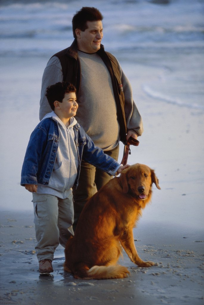 Father and his son with their dog on the beach : Stock Photo
