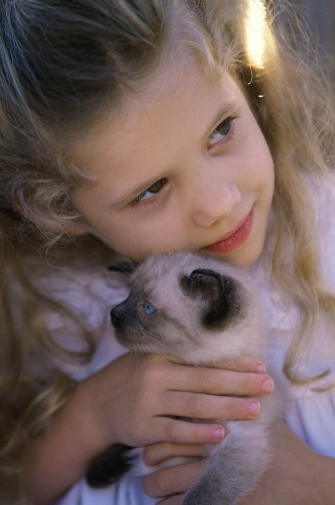 Stock Photo: 1574R-02934B Close-up of a girl holding a Siamese kitten