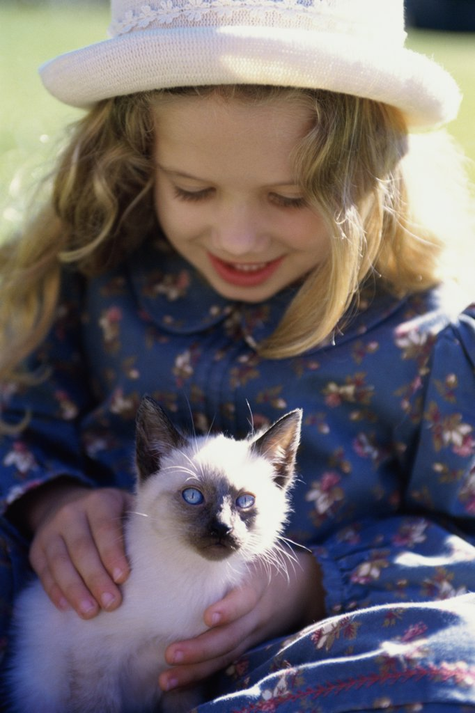 Close-up of a girl holding a Siamese kitten : Stock Photo