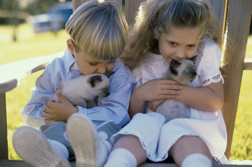 Boy and a girl sitting with Siamese kittens : Stock Photo