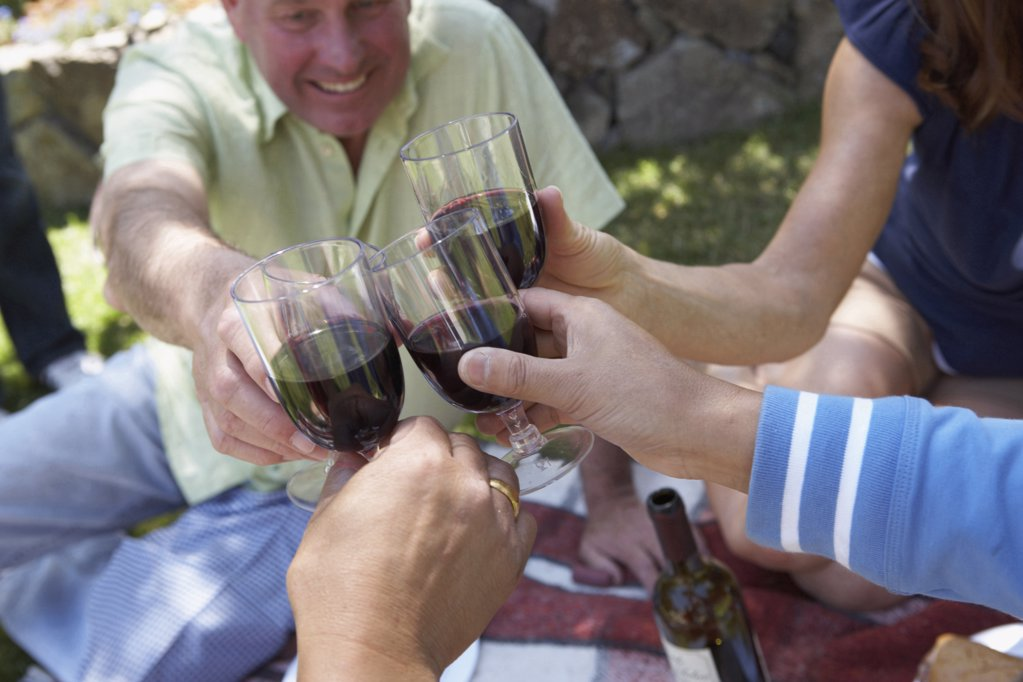 Close-up of a mature man and his friends toasting with wineglasses : Stock Photo