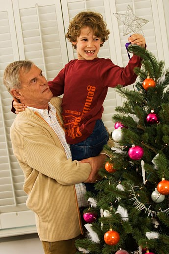 Stock Photo: 1574R-21264 Side profile of a senior man with his grandson decorating a Christmas tree