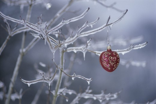 Christmas ornament hanging on a frozen tree : Stock Photo