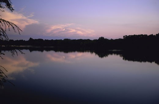 Silhouette of trees across a lake during sunset, Kansas, USA : Stock Photo