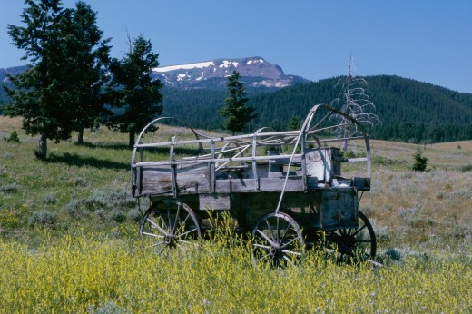 Cart on a landscape, Centennial Mountains, Montana, USA : Stock Photo