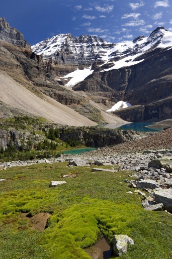 Lake in front of mountains, Lake Oesa, Yoho National Park, British Columbia, Canada : Stock Photo