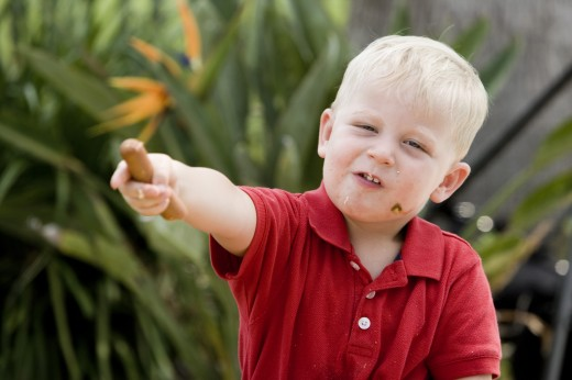 Stock Photo: 1574R-27273 Close-up of a boy holding hot dog