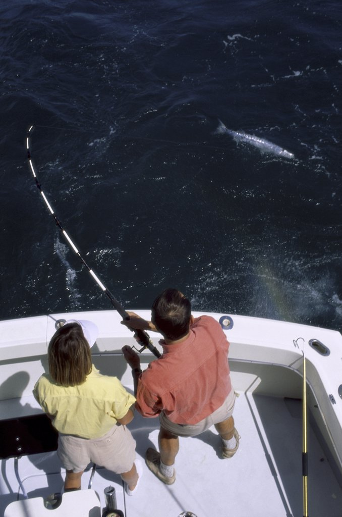 High angle view of a mid adult couple fishing in the sea : Stock Photo