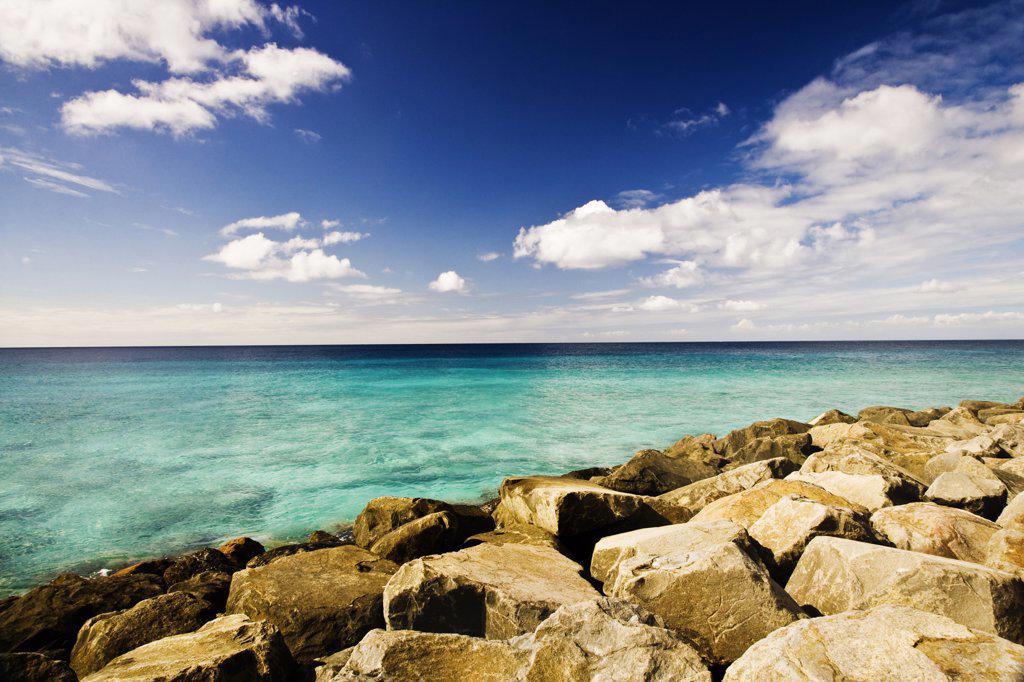Rocks on the beach : Stock Photo