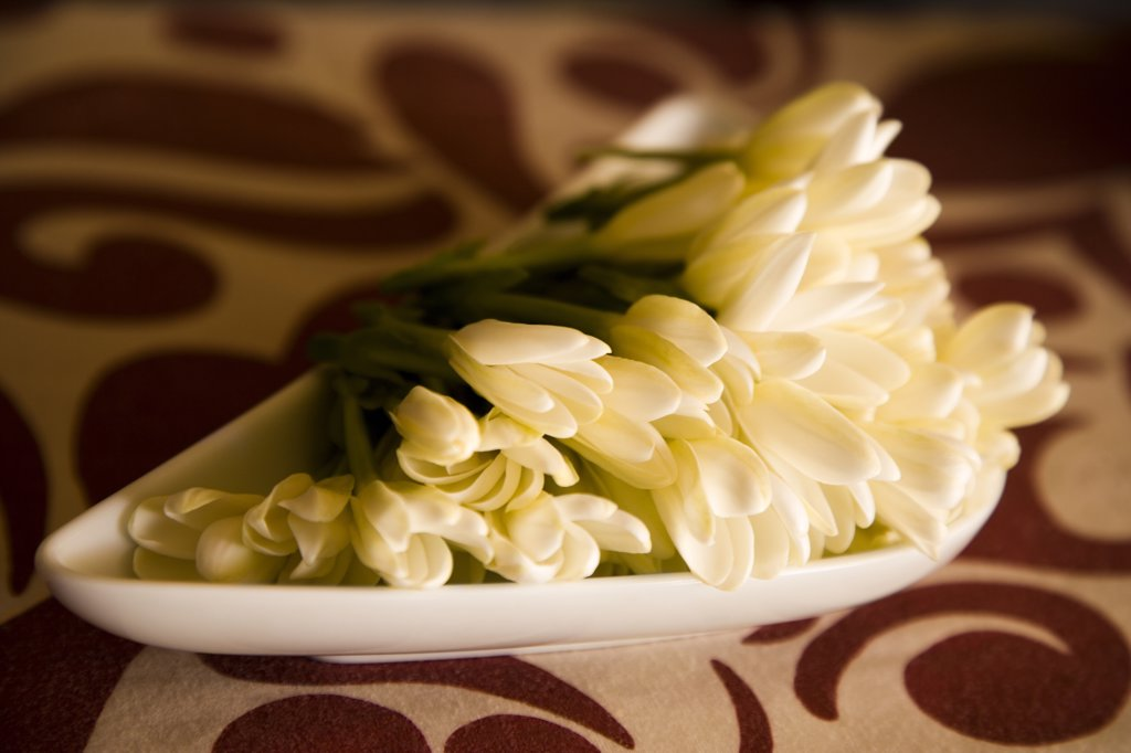 Stock Photo: 1574R-36905 Flowers for aromatherapy in a tray, Papeete, Tahiti, French Polynesia