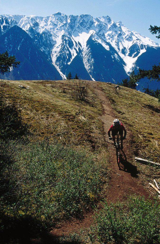 Mountain Biking near Pemberton, B.C. : Stock Photo