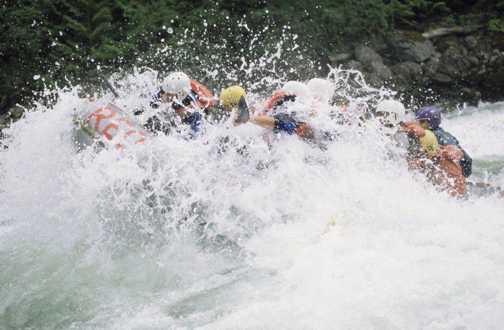 White Water RAfting, Nahatlatch River, Boston Bar, BC : Stock Photo