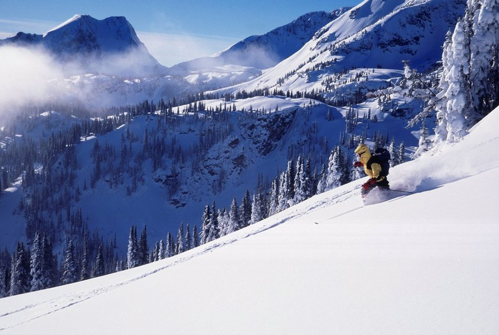 Backcountry skiing, Wells Gray Park, BC : Stock Photo