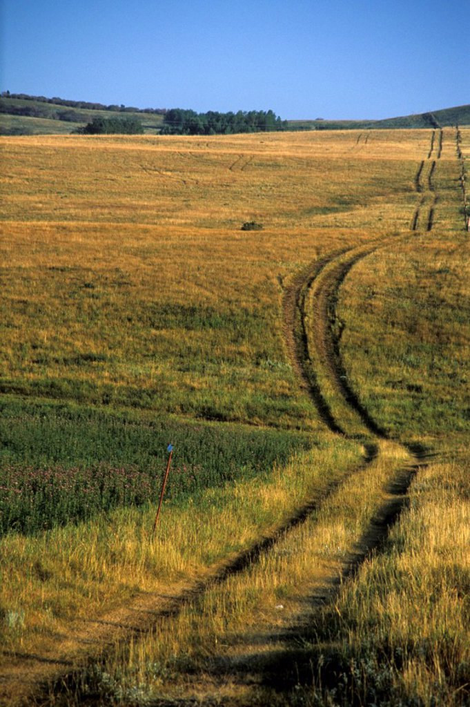 Stock Photo: 1575-8360 Trail and hills, Morley, Alberta, Canada