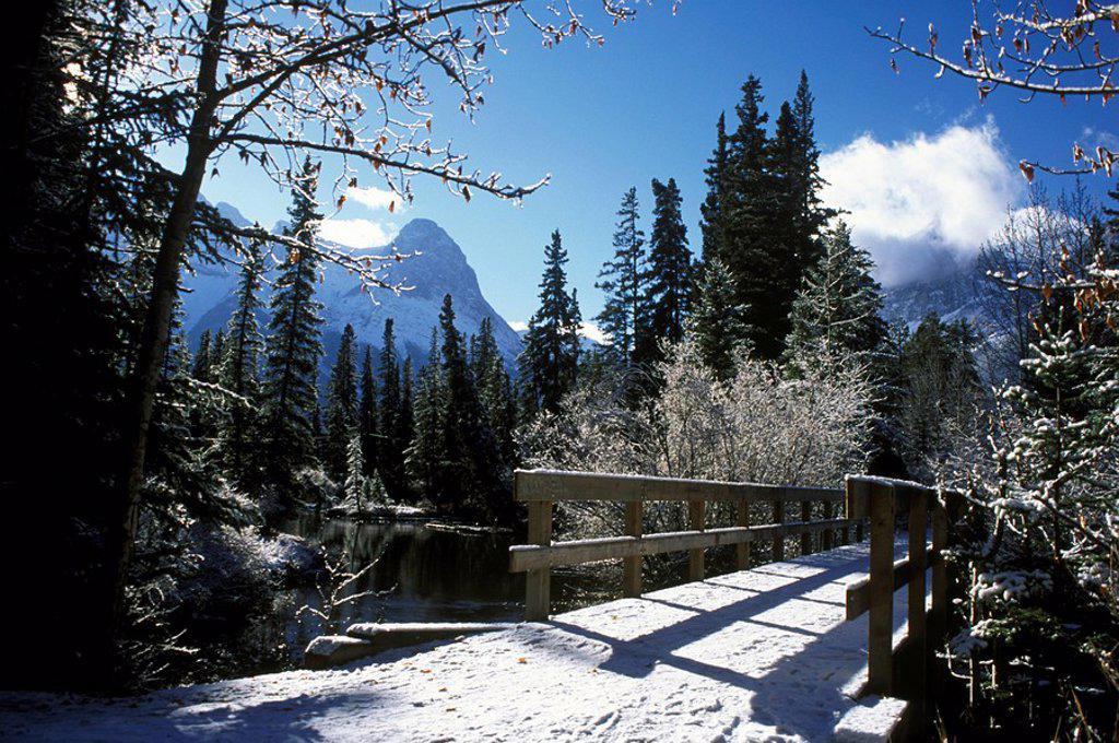 Winter in Canmore, Alberta, Canada : Stock Photo