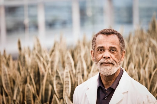 African American scientist working in greenhouse : Stock Photo
