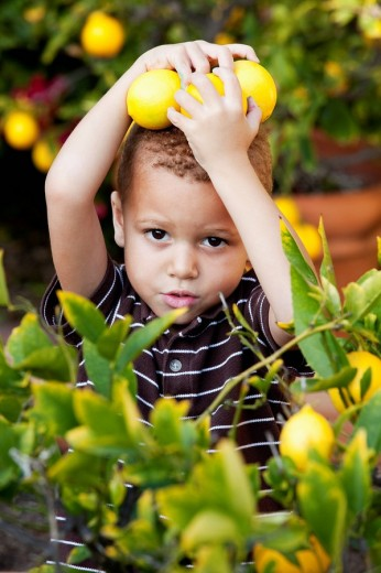 African American boy holding lemons : Stock Photo
