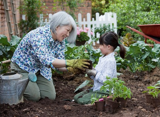 Stock Photo: 1589-137209 Woman and girl working in garden